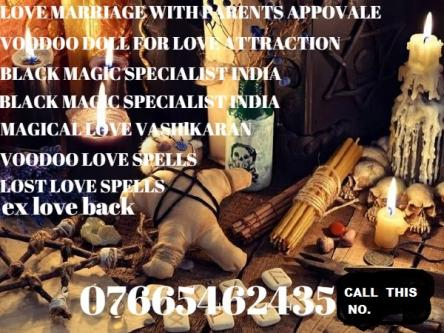 LOVE MARRIAGE WITH PARENTS APPROVALE IN 24 HOUR    , Meerut